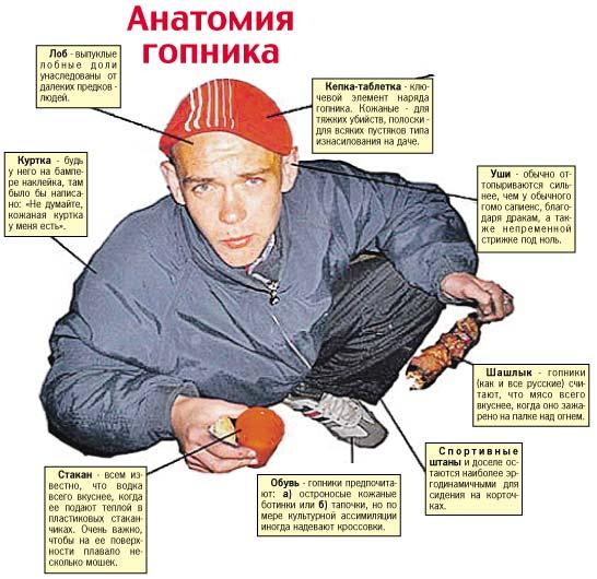 Анатомия гопника